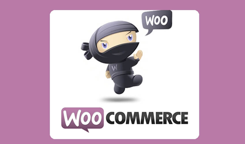 WooCommerce Developer