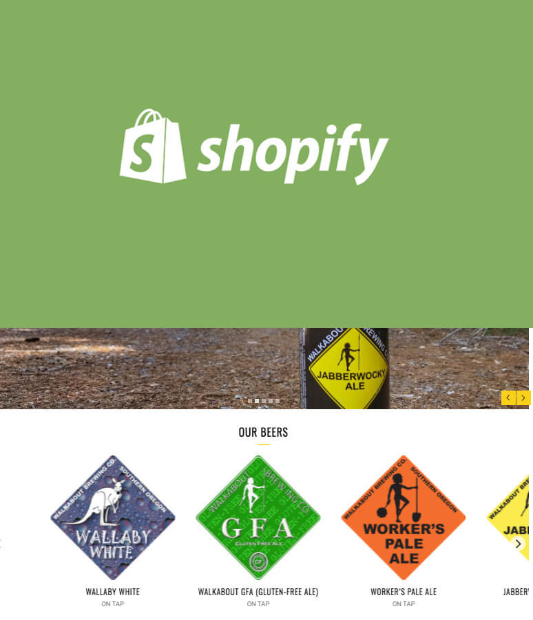 How to Add Product Carousel to Homepage Shopify