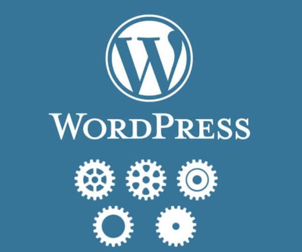 Wordpress Website Maintenance Plan Basic