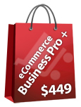 Ecommerce Business Pro Plus Package